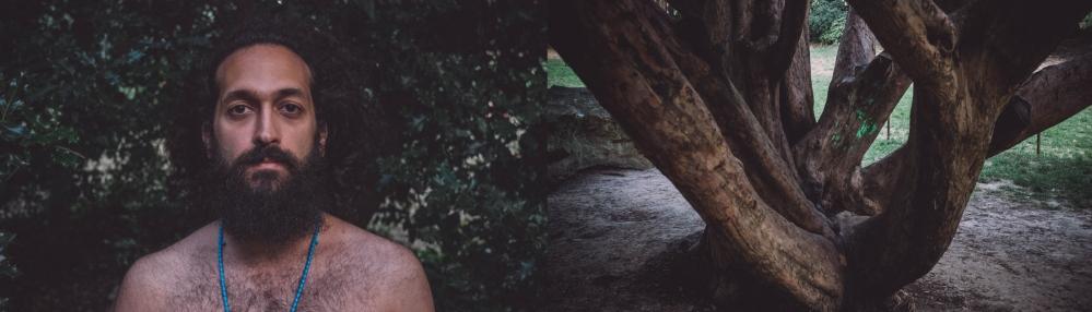 sinatree